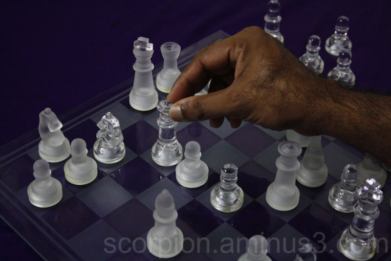 Check mate!!  for both Clear & Frosted Kings ...??