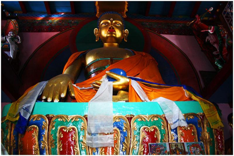 Buddha@Nyingmapa Buddhist Temple, Manali...