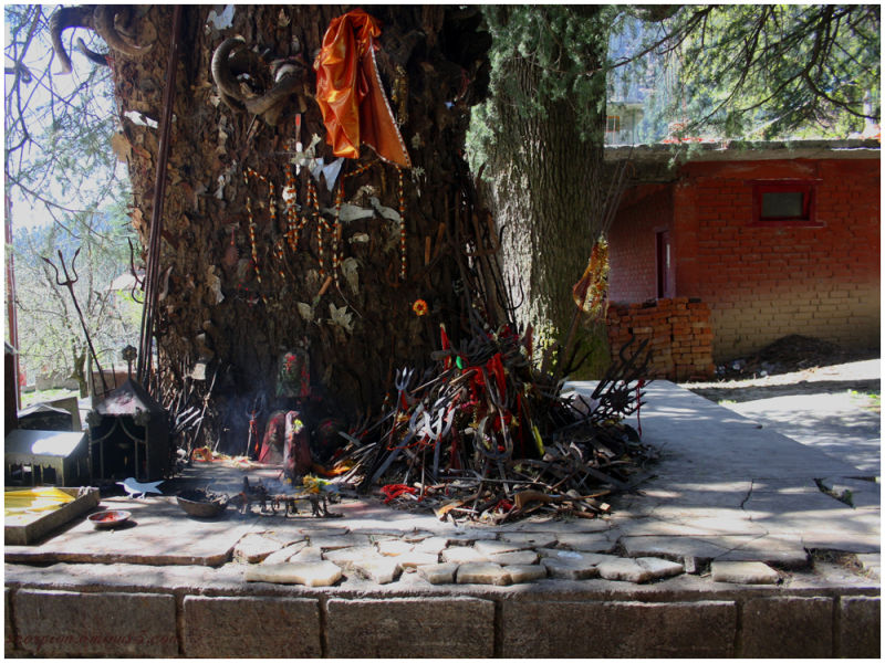 Ghatotkacha Tree Temple @ Manali