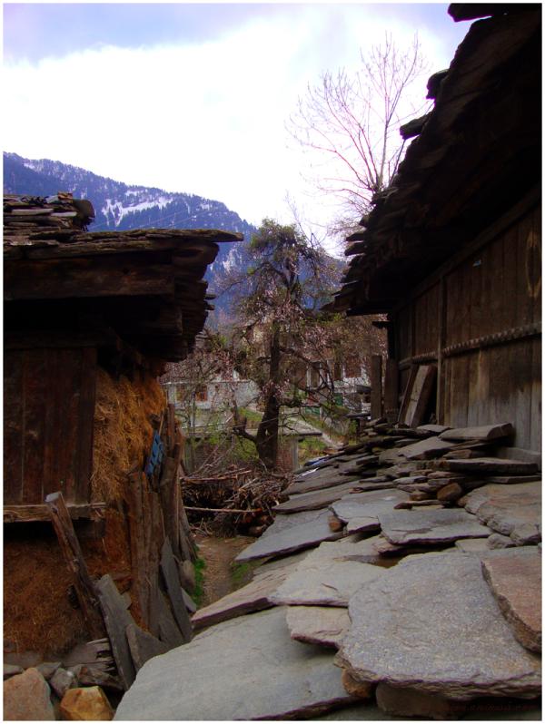Old Manali - 2, Himachal Pradesh...