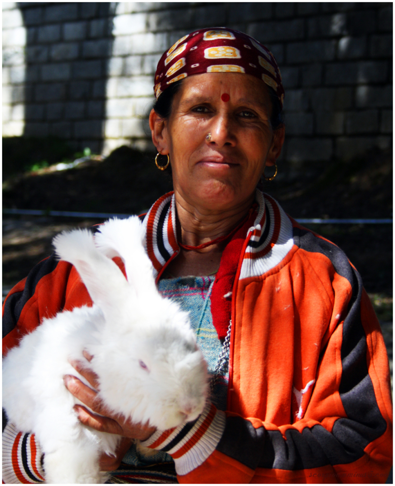 """""""Himachali"""" lady with a Rabbit"""