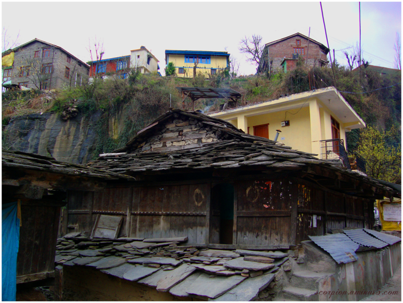 Old Manali - 3, Himachal Pradesh...