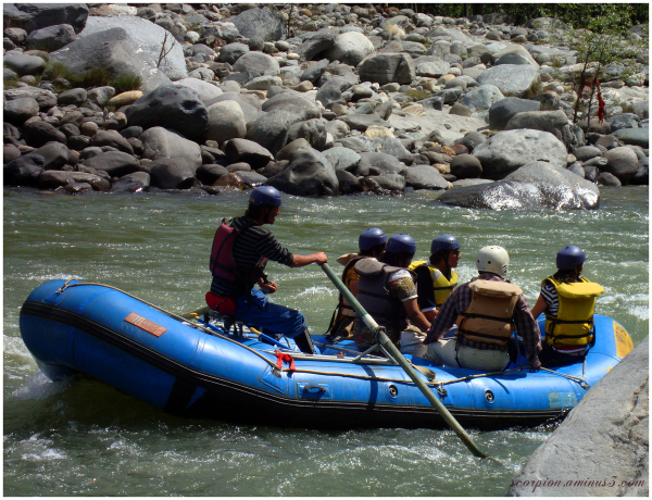 On a Raft...