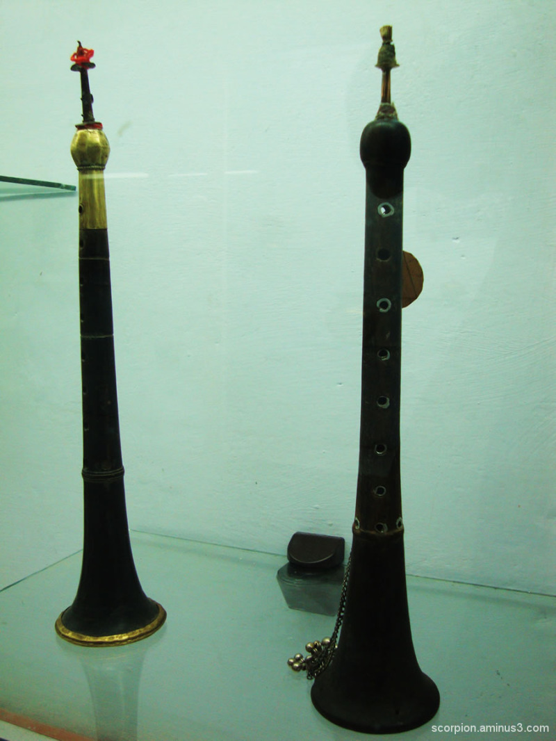 Musical Instrument  @ the Himachal Museum....