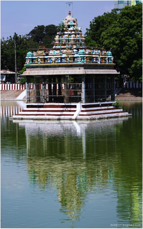 Mylapore Temple Tank, Chennai