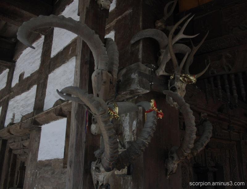 At the Hadimba temple, Manali...