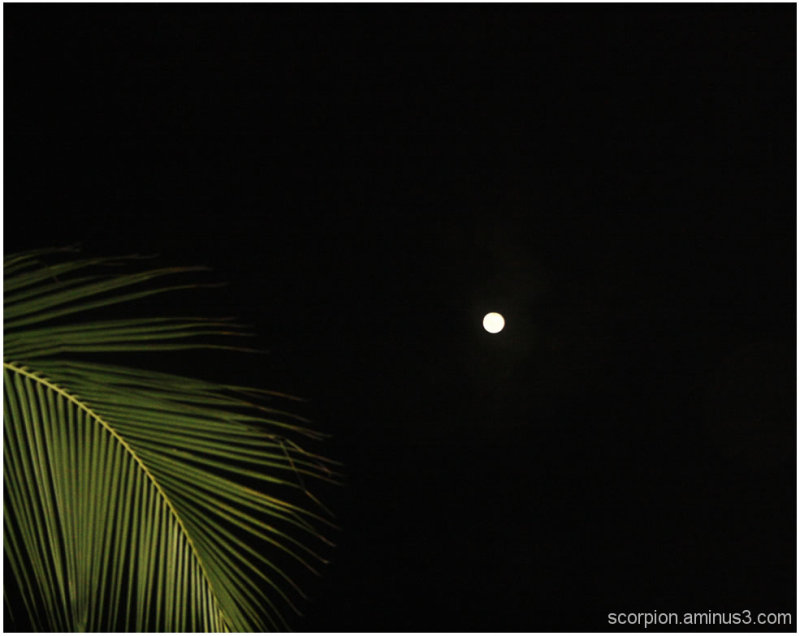 Solitary moon on a night sky in Chennai...