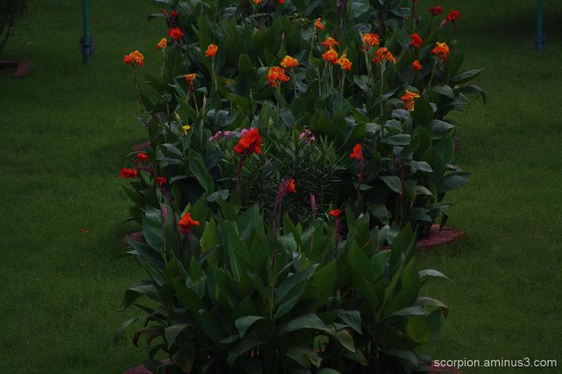 Garden in Valluvar Kottam, Chennai