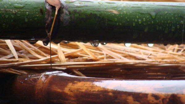 Water Drop, Rainwater