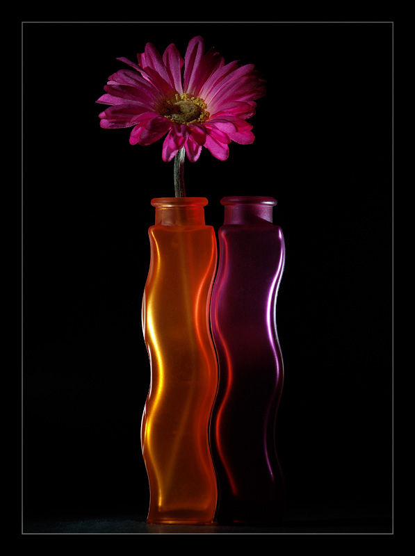 Vase and flower