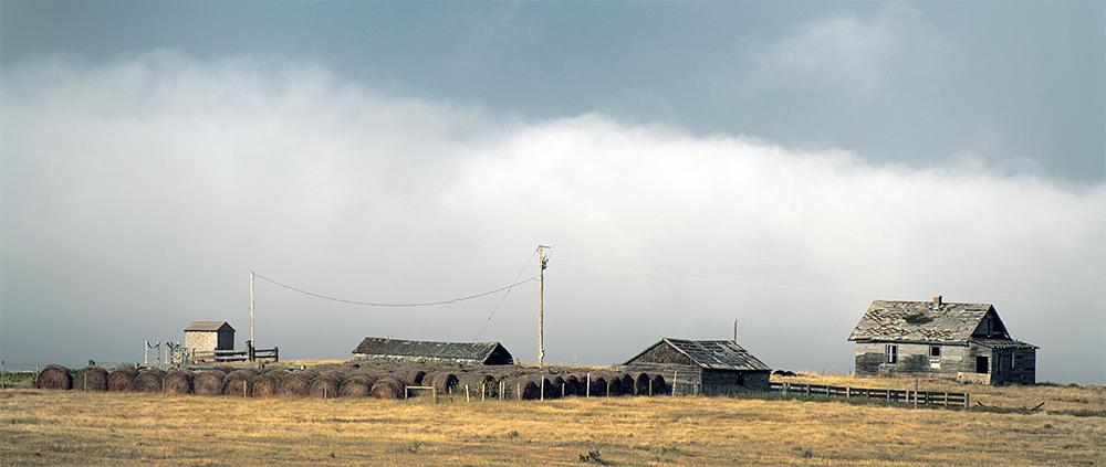 Farm and fog