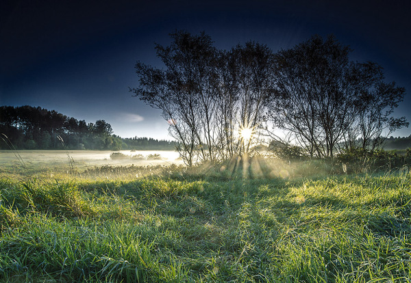 Sunrise at Deer lake