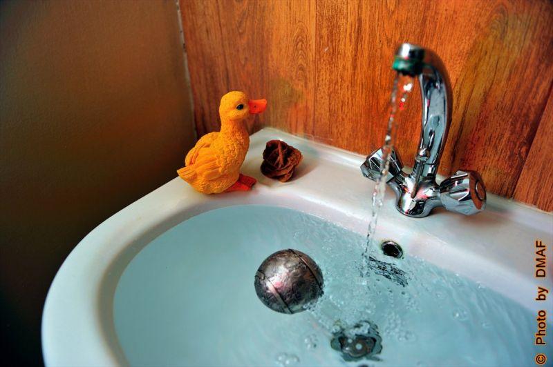 small duck in my wastafel