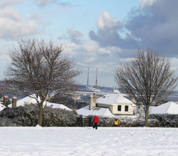 Pigeon House from Mount Merrion Park january 2010