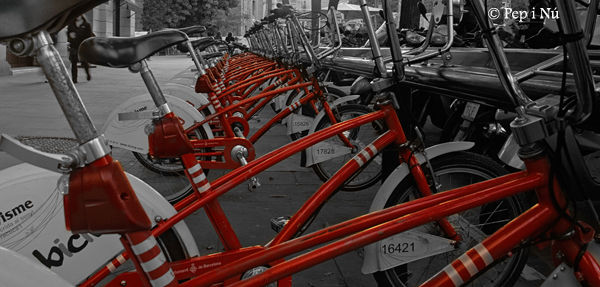 bicing, bacelona, ecologia, ciutat