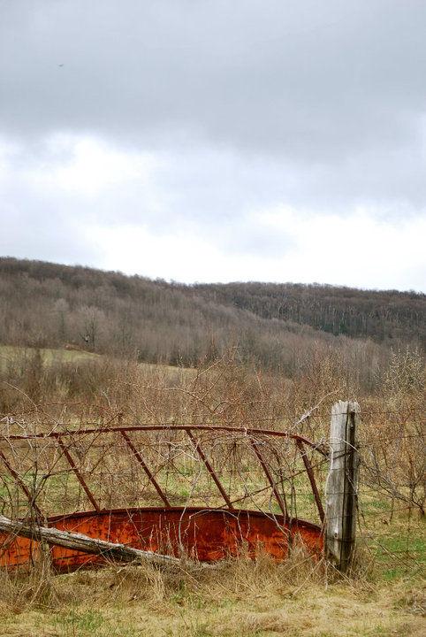 Markdale, Rural