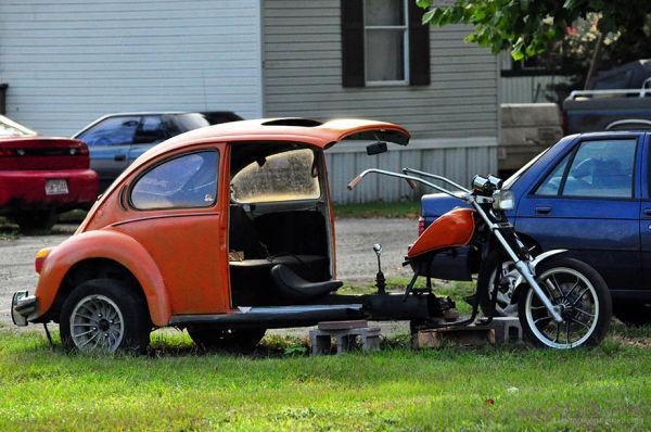 beetle bug redux