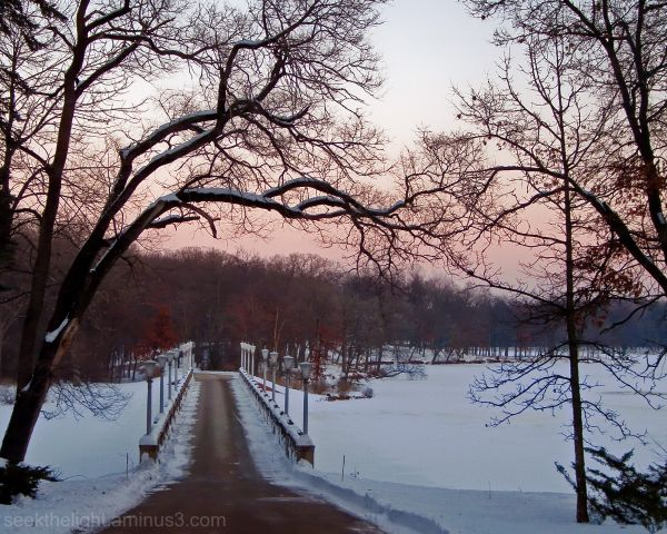 Currier & Ives in Pink