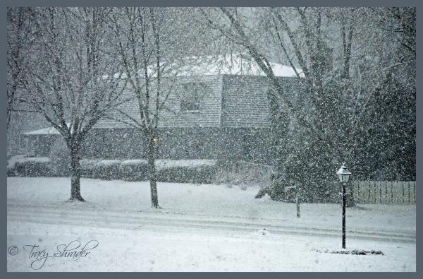 Let it Snow!! (#2)