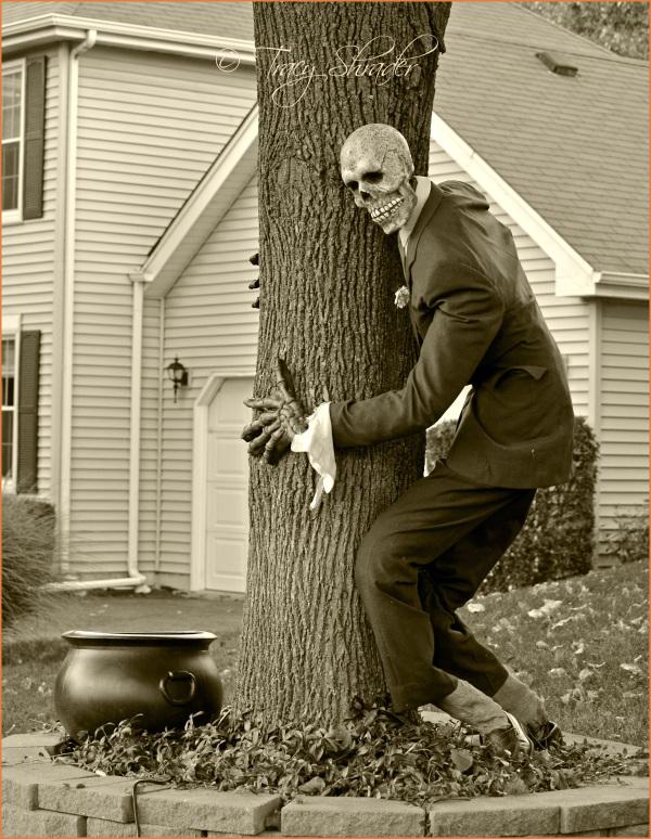 Be a Tree-Hugger...