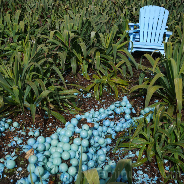 Blue Chair and Smashed Blue Balls