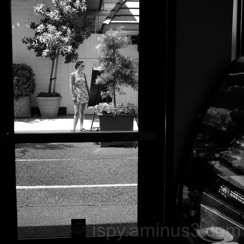 The Woman Outside the Restaurant