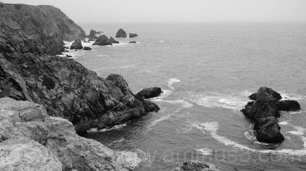 Bodega Head Coastline