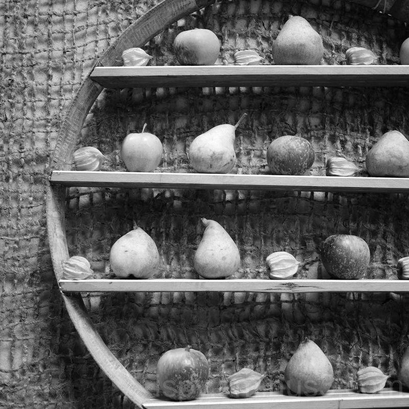Fruit on Shelves