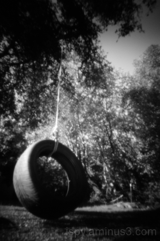 Old Tire Swing