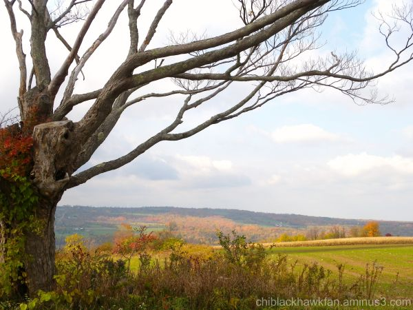 Autumn in the Mohawk Valley