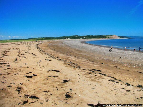 Saint Rest Beach