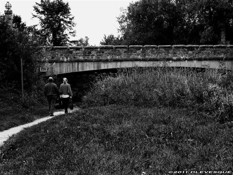 Lovers Lane in bw