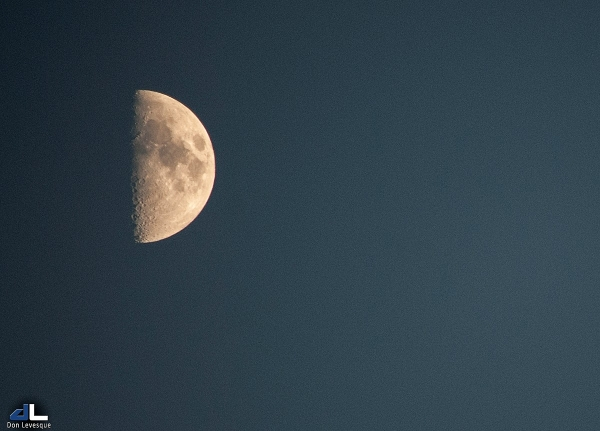 Half Moon - 8:15pm, Aug. 24th 2012