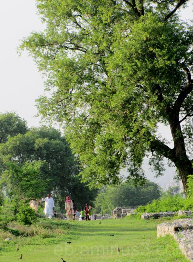 Promenade dominicale - Pakistan