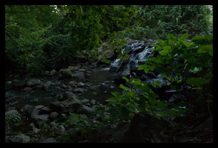 Waterfall, Water, nature, tree, leaf, leaves
