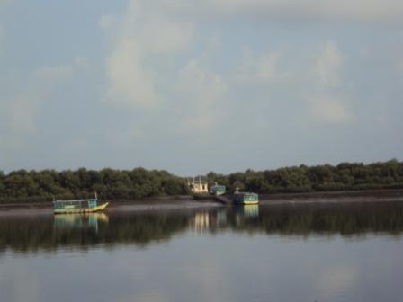 Calm waters early in the morning @ Gorai creek