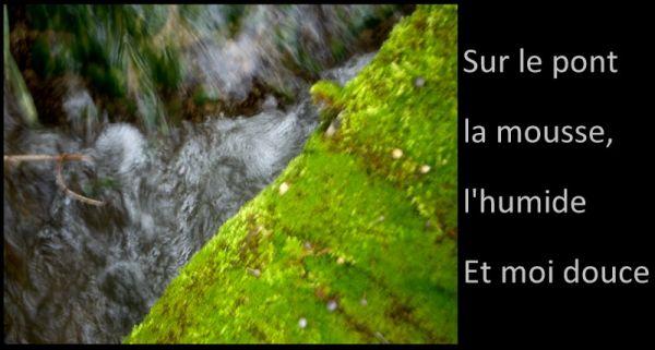 riverside, green life