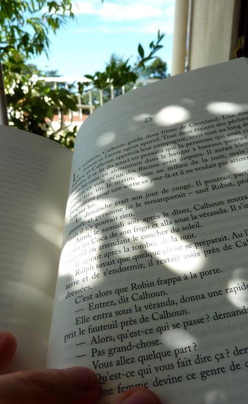 Les ombres des livres