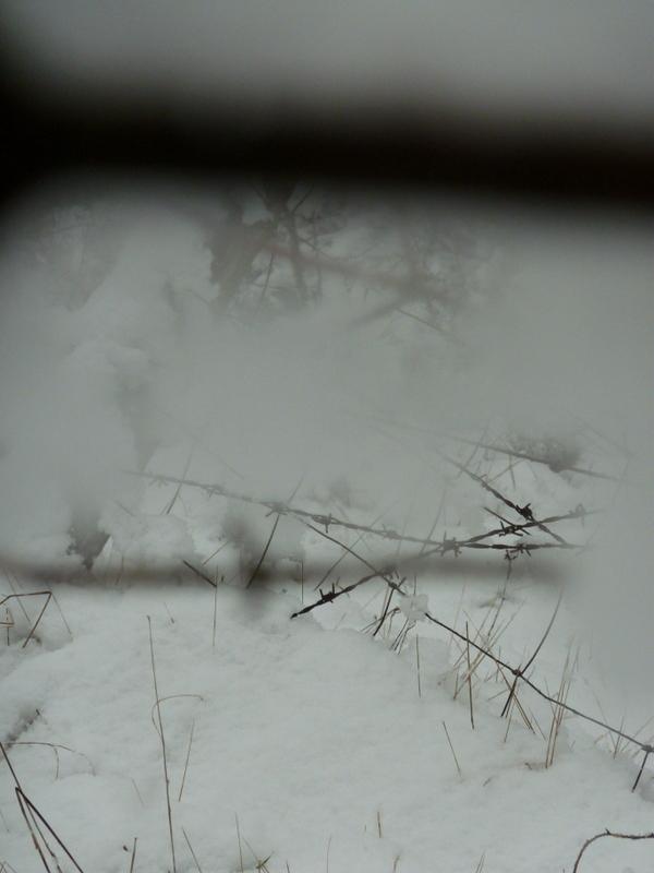 Brouillard blanc