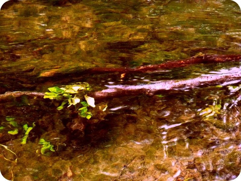 nature d'eau