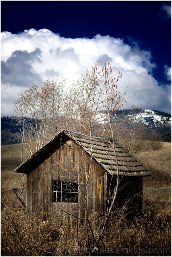 Small, deserted shack outside of Worley, ID