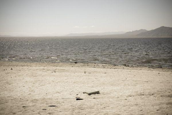 Salton Sea VII