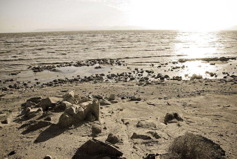 Salton Sea XIII