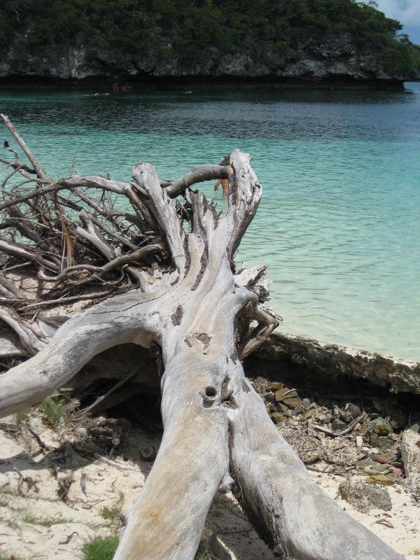 Vanuatu Isle of Pines beach