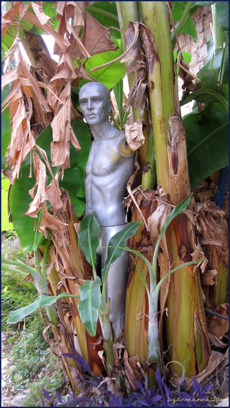 model amongst the palms