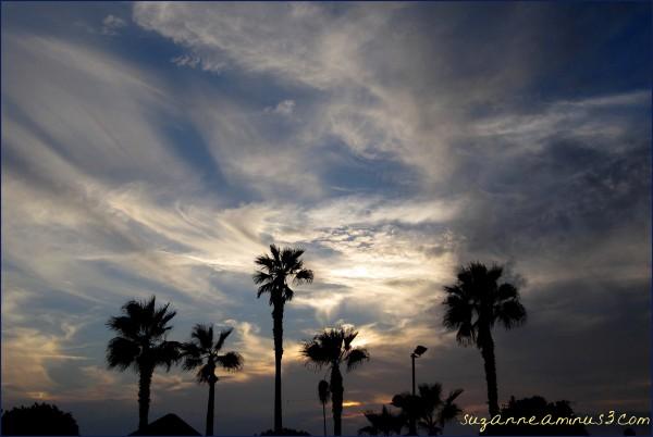 At dusk in Tel Aviv