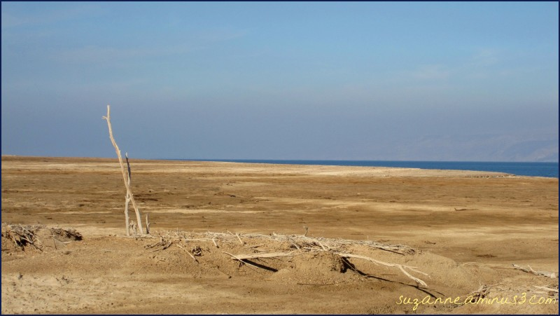 The Dead Sea Israel Banks