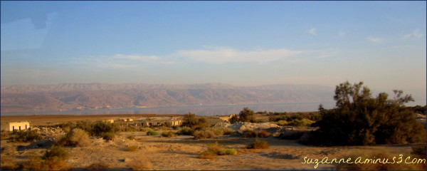 return journey from the Dead Sea Israel
