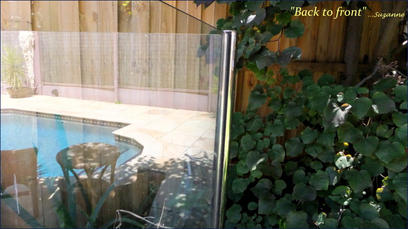 glass fence with pool reflections and garden