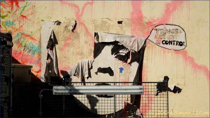 image, street art, face, gate, front,paris